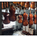 Wexford Volins  Model WV600 Violin Outfit