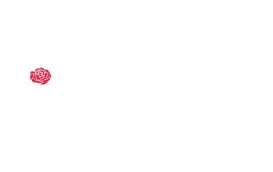 Wexford Violin